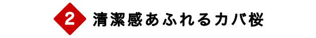 カバ桜(バーチ)無垢フローリング